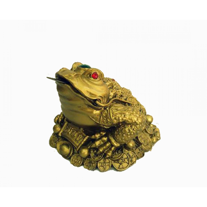 Βάτραχος της Αφθονίας